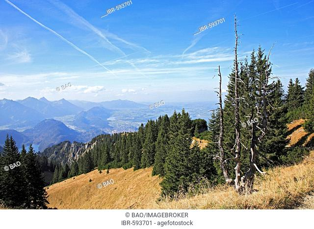 Landscape on the Tegelberg mountain, Schwangau, Bavaria, Germany