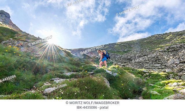 Female hiker on footpath in mountains, sun shines over ridge, ascend Greifenberg, Schladminger Tauern, Styria, Austria
