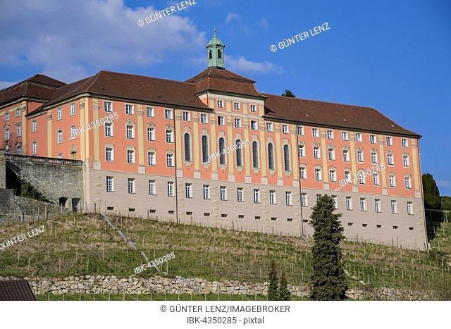 State vineyard, Meersburg, Baden-Wuerttemberg, Germany