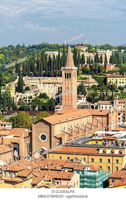 High angle view of Sant'Anastasia cathedral. Verona, Veneto, Italy