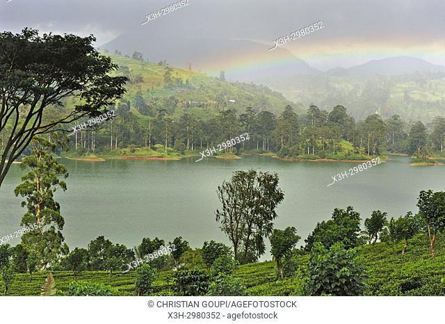 rainbow over the Castlereagh Lake, near Hatton, Sri Lanka, Indian subcontinent, South Asia