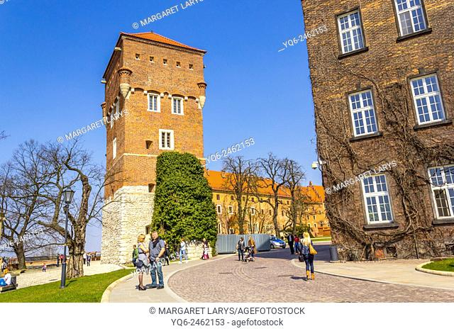 Tourists walking to the Royal Wawel Castle on the Wawel hill in Krakow, Poland, Europe