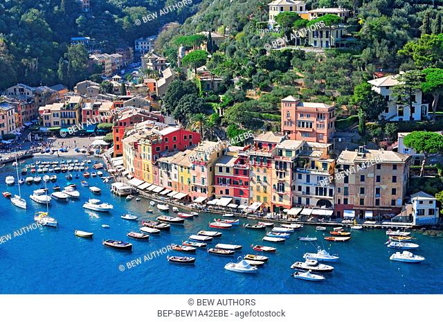 Liguria Portofino View of harbor with moored boats and pastel colored houses lining the bay with trees on hills behind