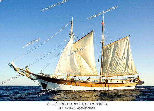 El Isla Ebusitana es un pailabote construido en el año 1855 para transportar sal de las islas Baleares a la península. Es uno de los barcos más antiguos que...