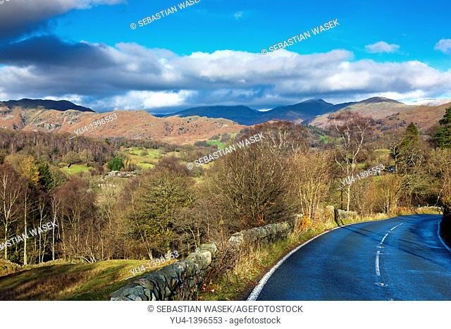 View from road A593 towards Silver How and Loughrigg Fell, Skelwith, Lake District National Park, England, Europe