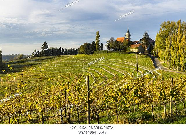 Jeruzalem village and its vineyards. Jeruzalem, Ljutomer, Mura region, Slovenia