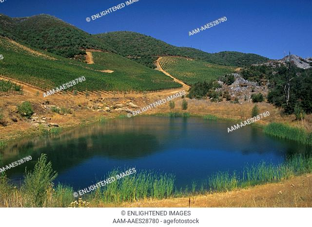 Stevenot Winery, near Murphys Ranch, Calaveras County, California