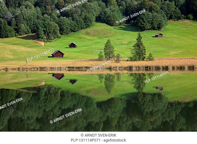 Wooden huts and reflection of pine forest in water along lake Gerold / Geroldsee near Mittenwald, Upper Bavaria, Germany