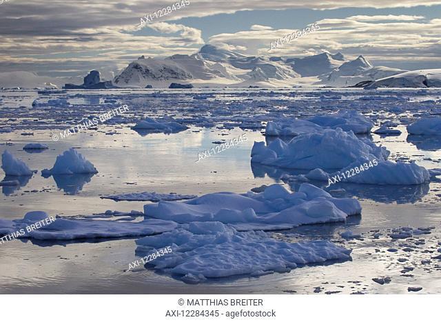 Icebergs in front of Neko Harbor, Antarctic Peninsula; Antarctica