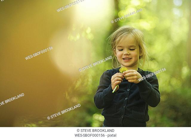 Girl in forest examining dandelion