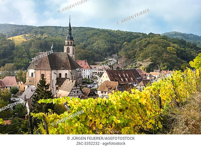 village Andlau and its vineyards seen from above, Alsace Wine Route, France, panorama with vine and foothills of the Vosges