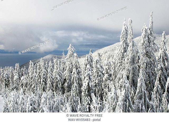 Cypress Ski Resort, West Vancouver