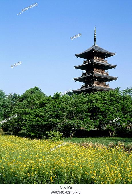 Five Story Pagoda of Bitchu Kokubunji Temple, Soja, Okayama, Japan