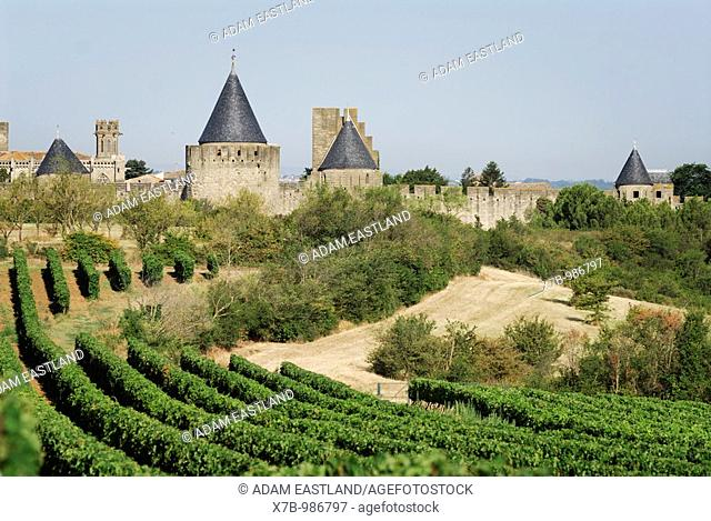 Carcassonne  France  Grape vines and the medieval walled Cité