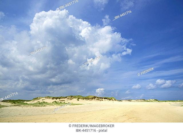 Dunes, Norderney, East Frisian Islands, North Sea, Lower Saxony, Germany