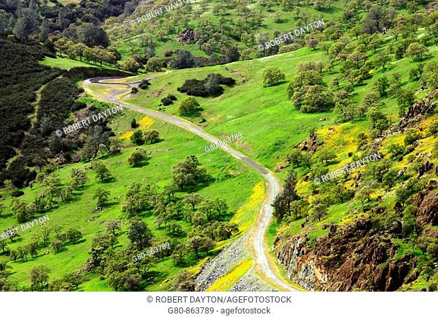 A winding road in the California foothills