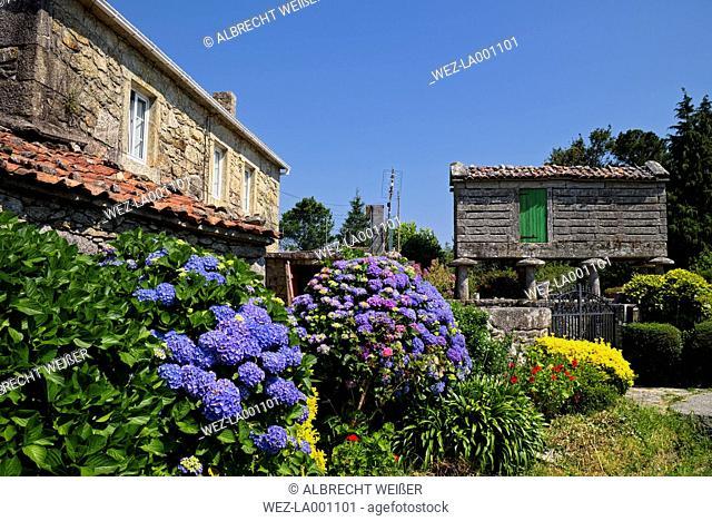 Spain, Galicia, Malpica de Bergantinos, traditional storage for crop