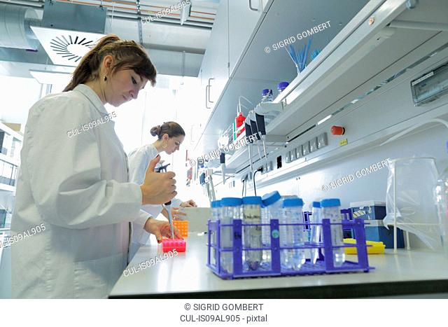 Biology lab technicians at work