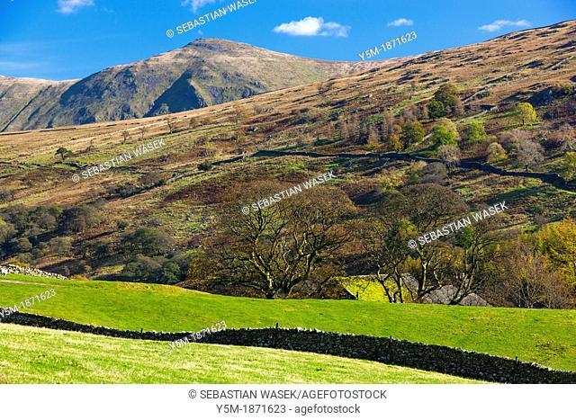 Farmland in the Lake District National Park, Cumbria, England, UK, Europe