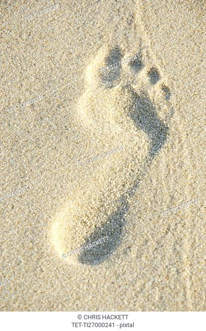 Close up of footprint in sand
