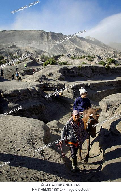 Indonesia, Java Island, East Java province, Bromo Tengger Semeru National Park, Mount Bromo (2329m), horseman carrying a tourist on horseback