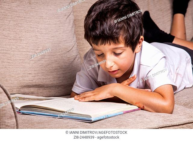 Schoolboy reading library book at home