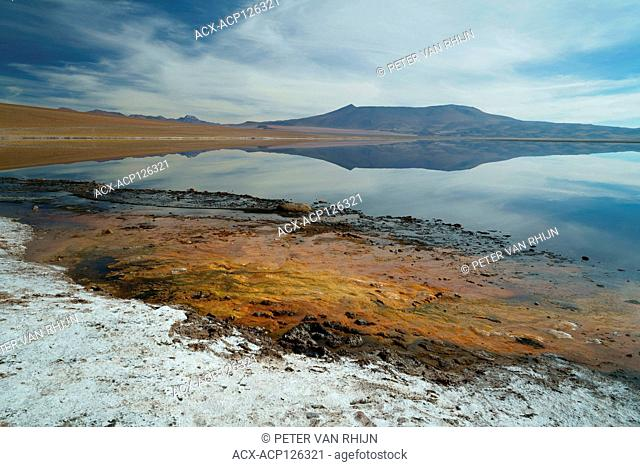 Volcanic Hot Springs line this lake on the Altiplano in the Atacama desert, Chile,close to the border with Argentina. 13,000 ft elevation, South America