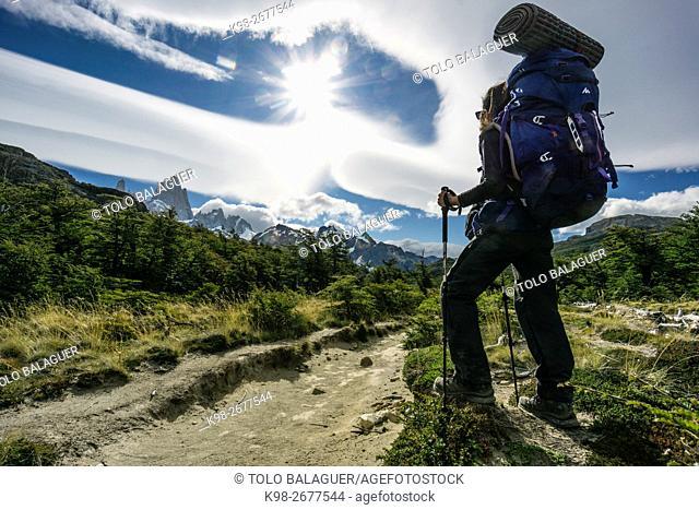 sendero hacia el campamento Poincenot, El Chalten, parque nacional Los Glaciares, republica Argentina,Patagonia, cono sur, South America
