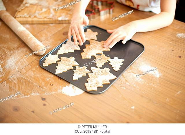 Girl's hands placing Christmas tree cookies onto baking tray