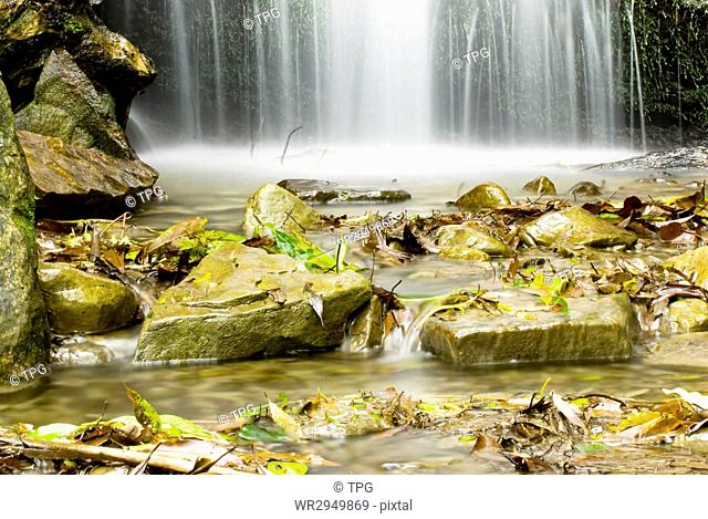 Small waterfall in the forest with rocks and fallen leaves