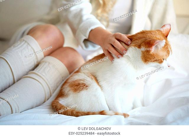 pets, animals and people concept - happy young woman with cat in bed at home