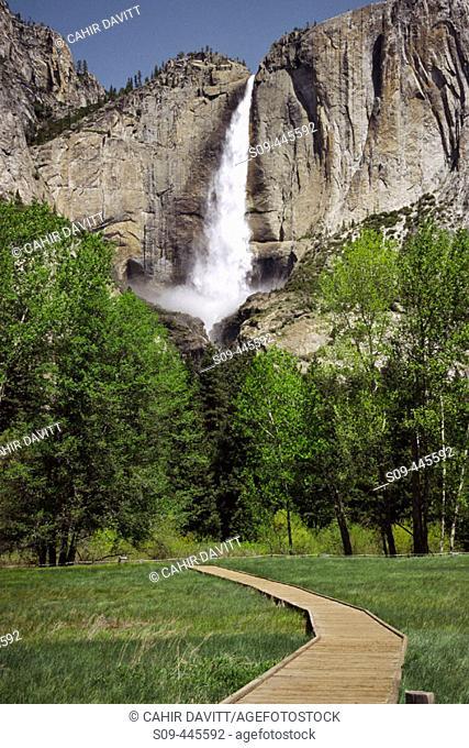 Upper Yosemite Falls, Yosemite National Park. California, USA