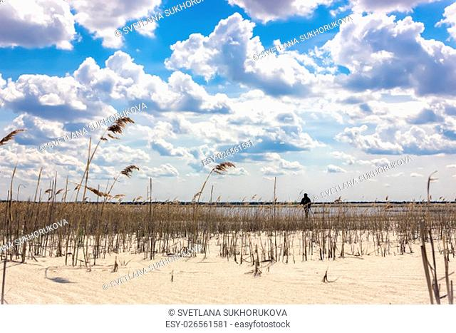 Remote silhouette of a man on a cane sandy beach by the lake under a beautiful cloudy sky
