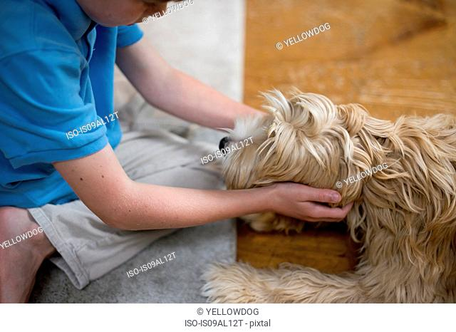 Young boy playing with dog