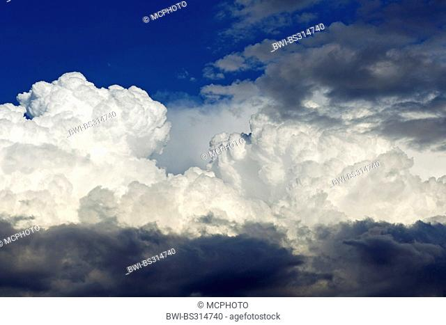 cumulus clouds, Germany, Baden-Wuerttemberg
