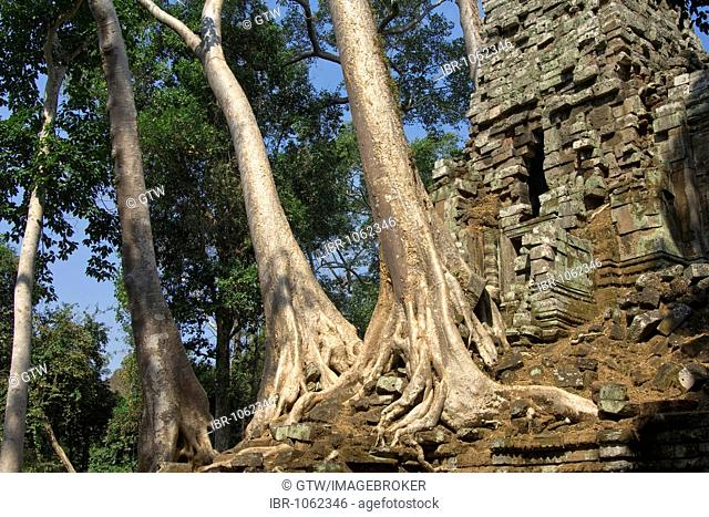 Ruin of Preah Palilay temple overgrown with trees and roots, Angkor Thom, UNESCO World Heritage Site, Siem Reap, Cambodia, Southeast Asia