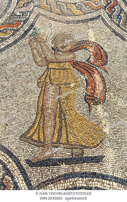 Floor mosaic, Roman ruins, Volubilis, Morocco