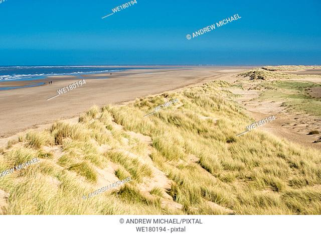 Sand dunes running along Holkham bay beach & Nature reserve on North Norfolk coast, East Anglia, England, UK