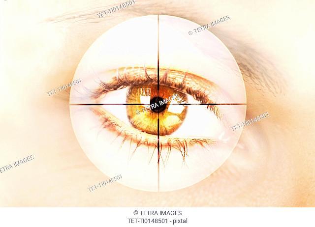 Close up of women's eye in digital viewfinder