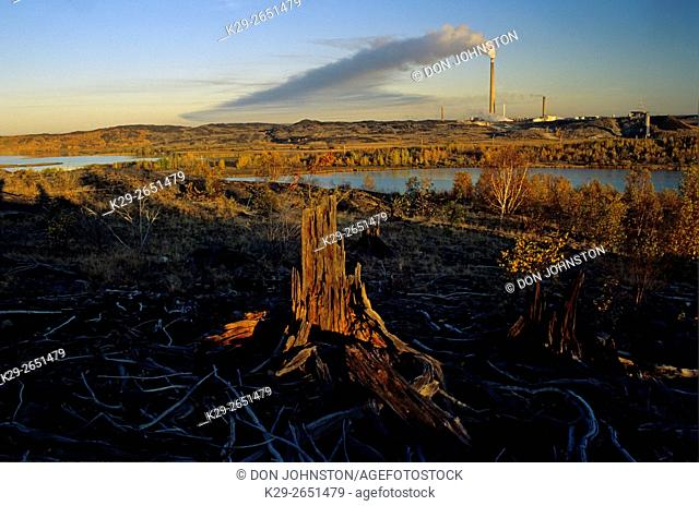 Dead tree stump in disturbed landscape with Vale INCO Superstack in distance, Greater Sudbury, Ontario, Canada