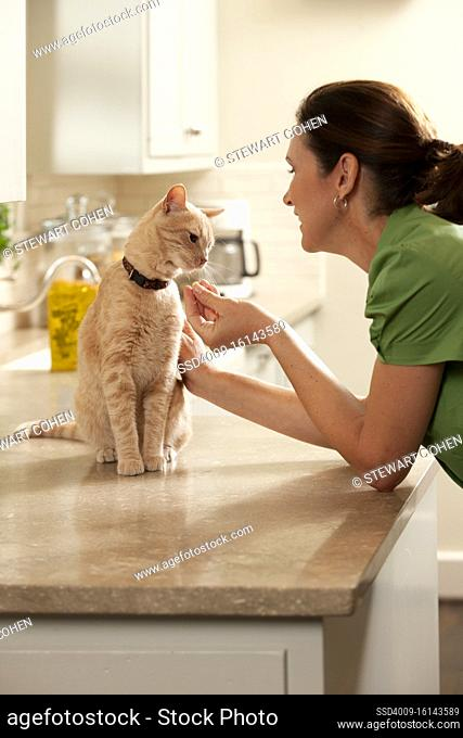 Middle Aged caucasian woman giving her cat a treat in the Kitchen, cat sitting on counter smelling treat in woman's hand