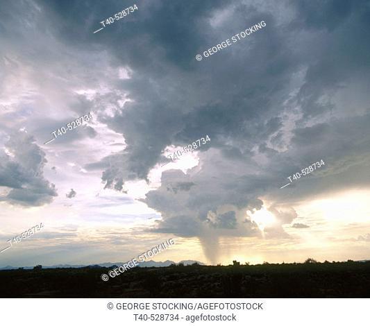 A monsoon dumps rain on the lower desert under four peaks.Tonto National Forest, Arizona, USA