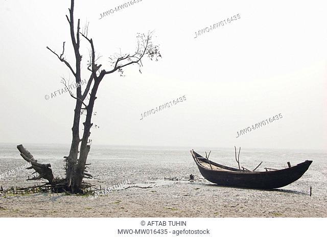 Landscape of Nijhum Island, Bangladesh August 6, 2008