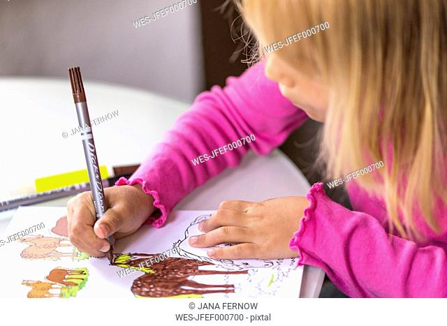 Little girl colouring horses in her colouring book