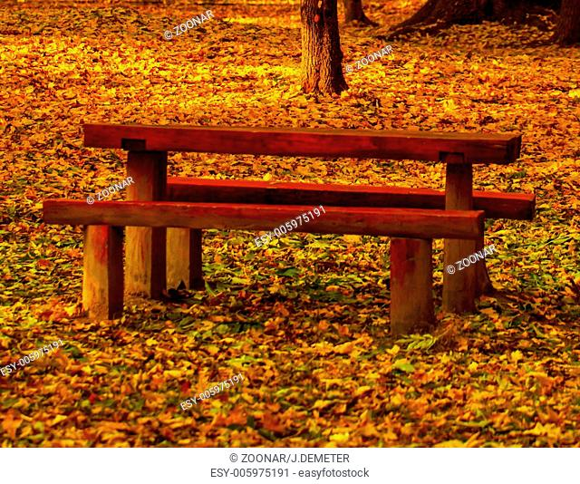 Beautiful colors of autumn landscape with bench