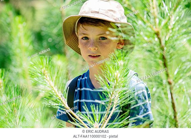 Boy in woods, portrait