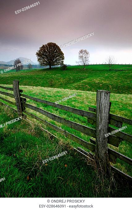 Fence in the pasture with trees, rain weather, Bohemian Switzerland