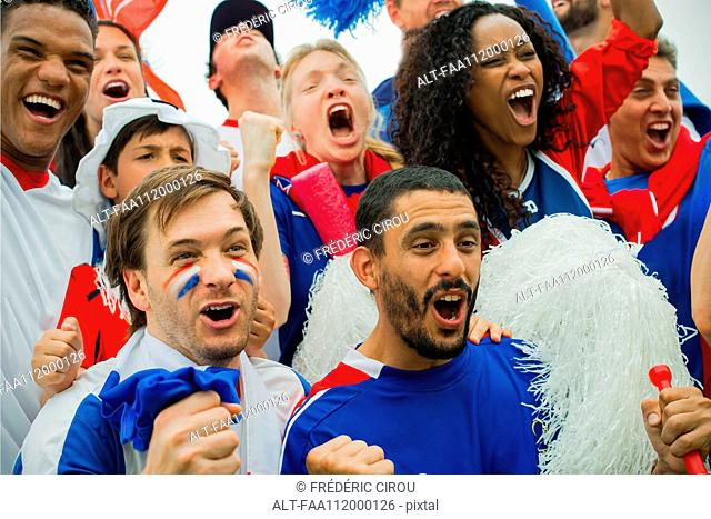 French football fans cheering at match