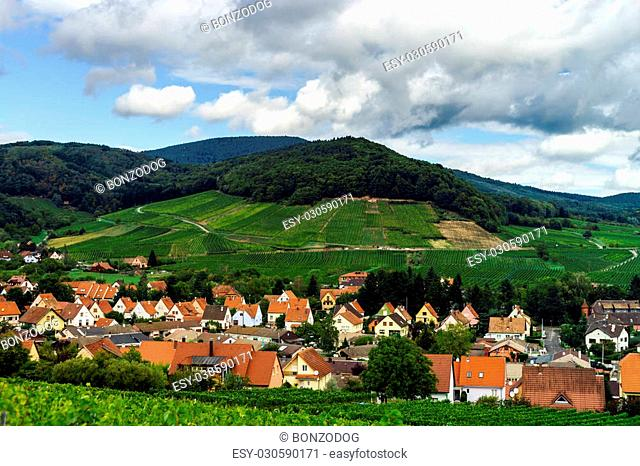 Summer green hills and vineyards in France, Alsace