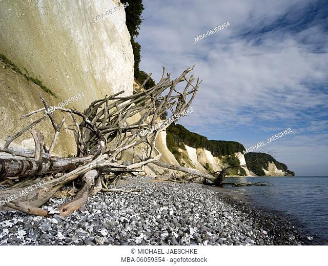 Chalk rocks of Rügen, Jasmund National Park